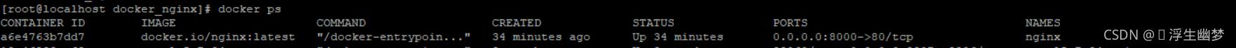Docker配置nginx文件(图片)访问代理