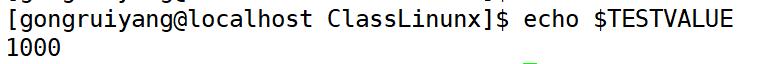 【Linux】一篇文章搞定环境变量