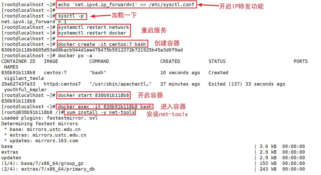 Docker 数据管理(数据卷容器/镜像创建)