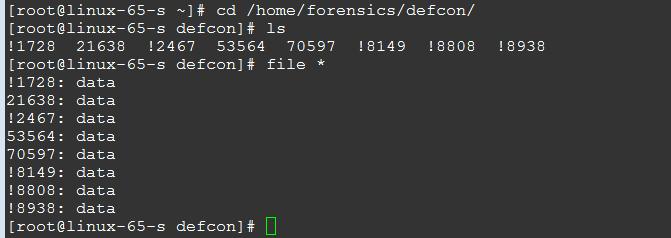 DEFCON 20 CTF 磁盘取证分析题目