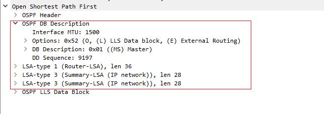 动态路由 - OSPF 一文详解